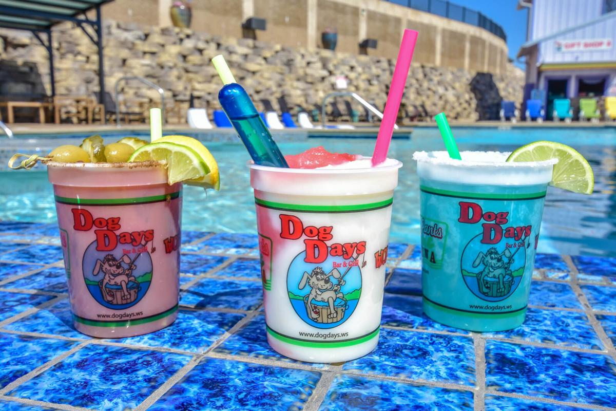 Dog Days Drinks - Bloody Mary, Pain In The Ass, Blue Moon Margarita