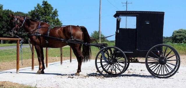 A Trip Into Mennonite Country