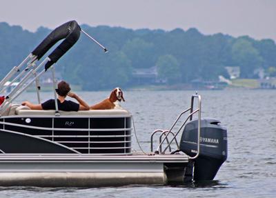 Hound on Lake.
