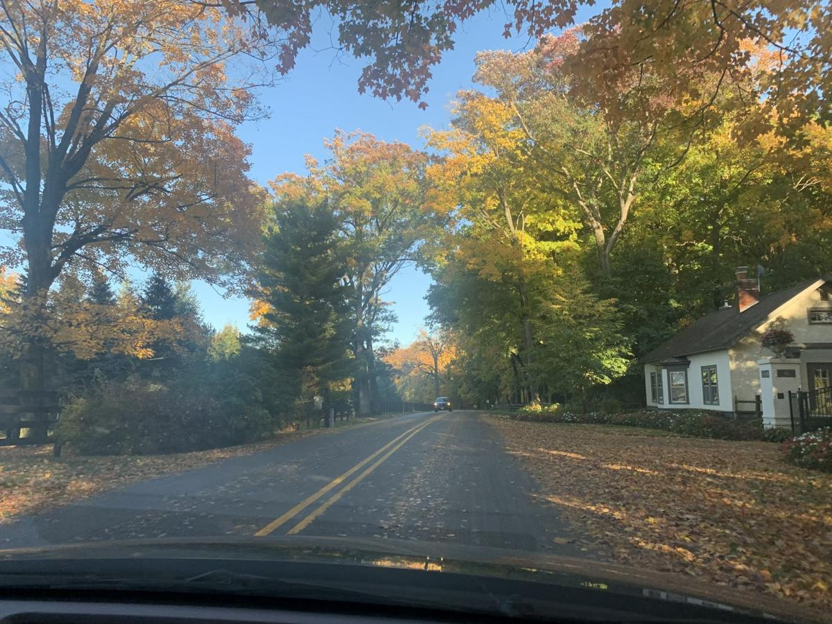 Snake Road fall colors