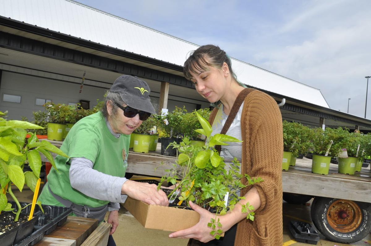 Victoria Gillio and Jen Schildgen at garden club plant sale