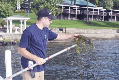 DNR guy looking for starry stonewort