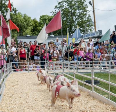 County fair file photo