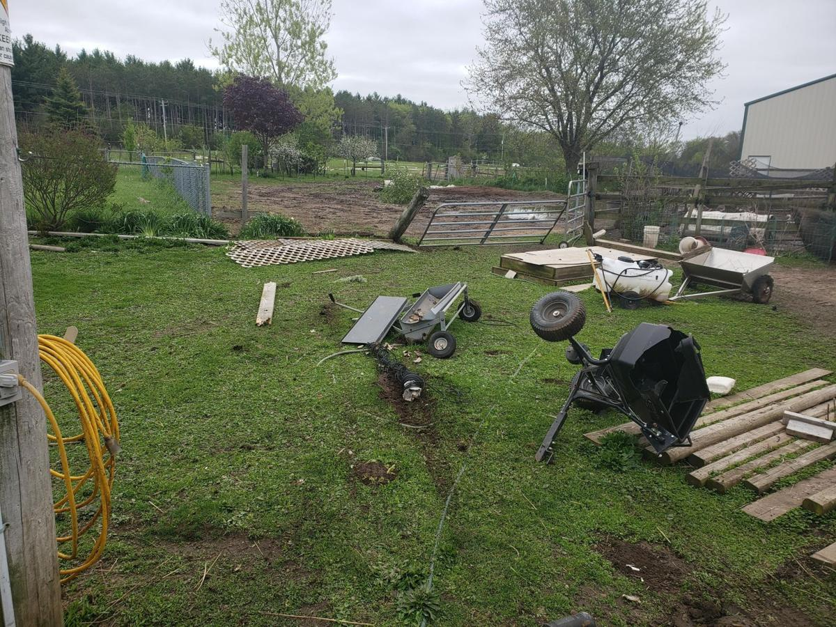 Sheriff: Driver 'blew a stop sign' then crashed through animal pasture