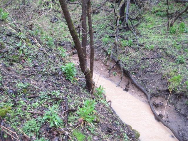 Ravine soil erosion