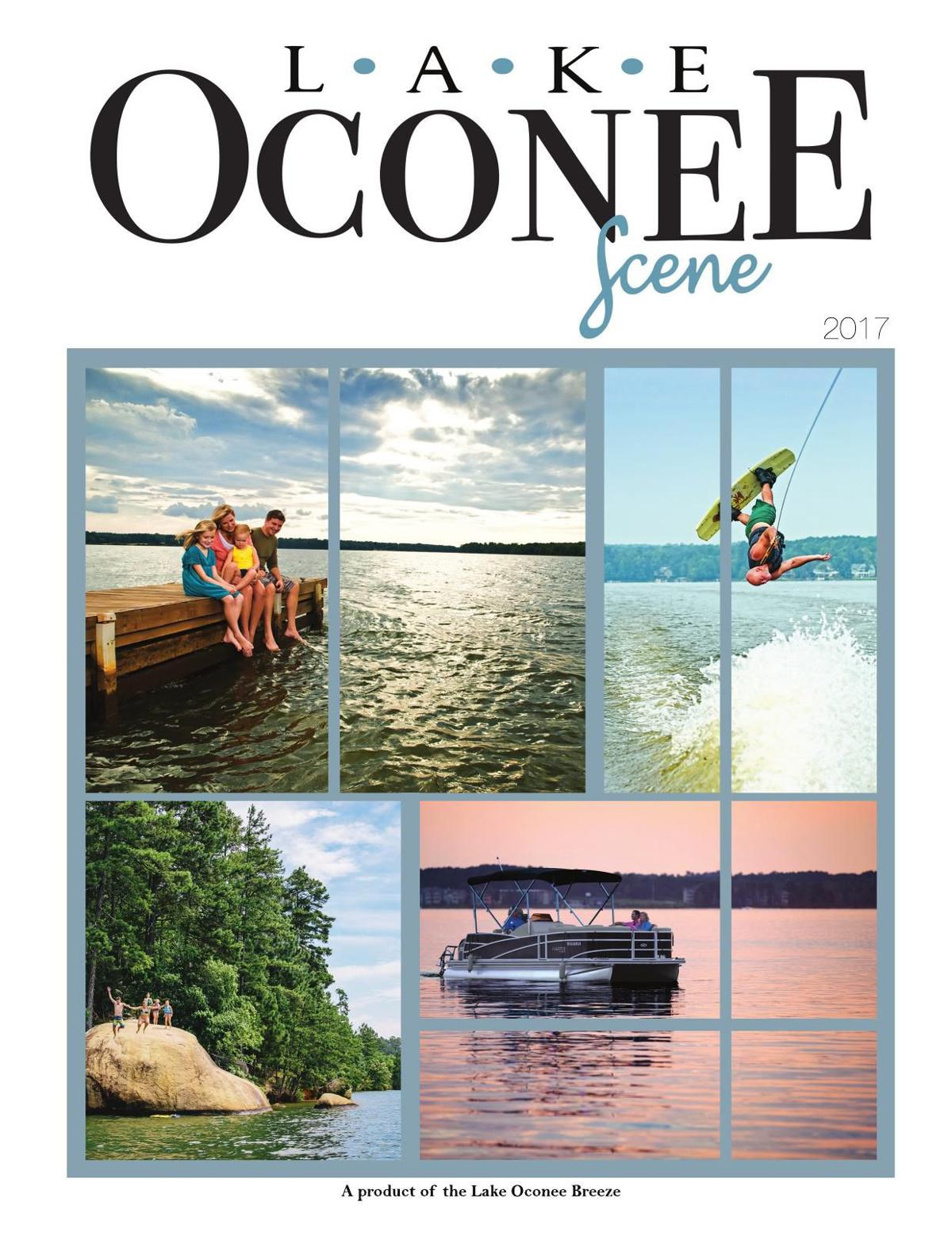 Lake Oconee Scene 2017