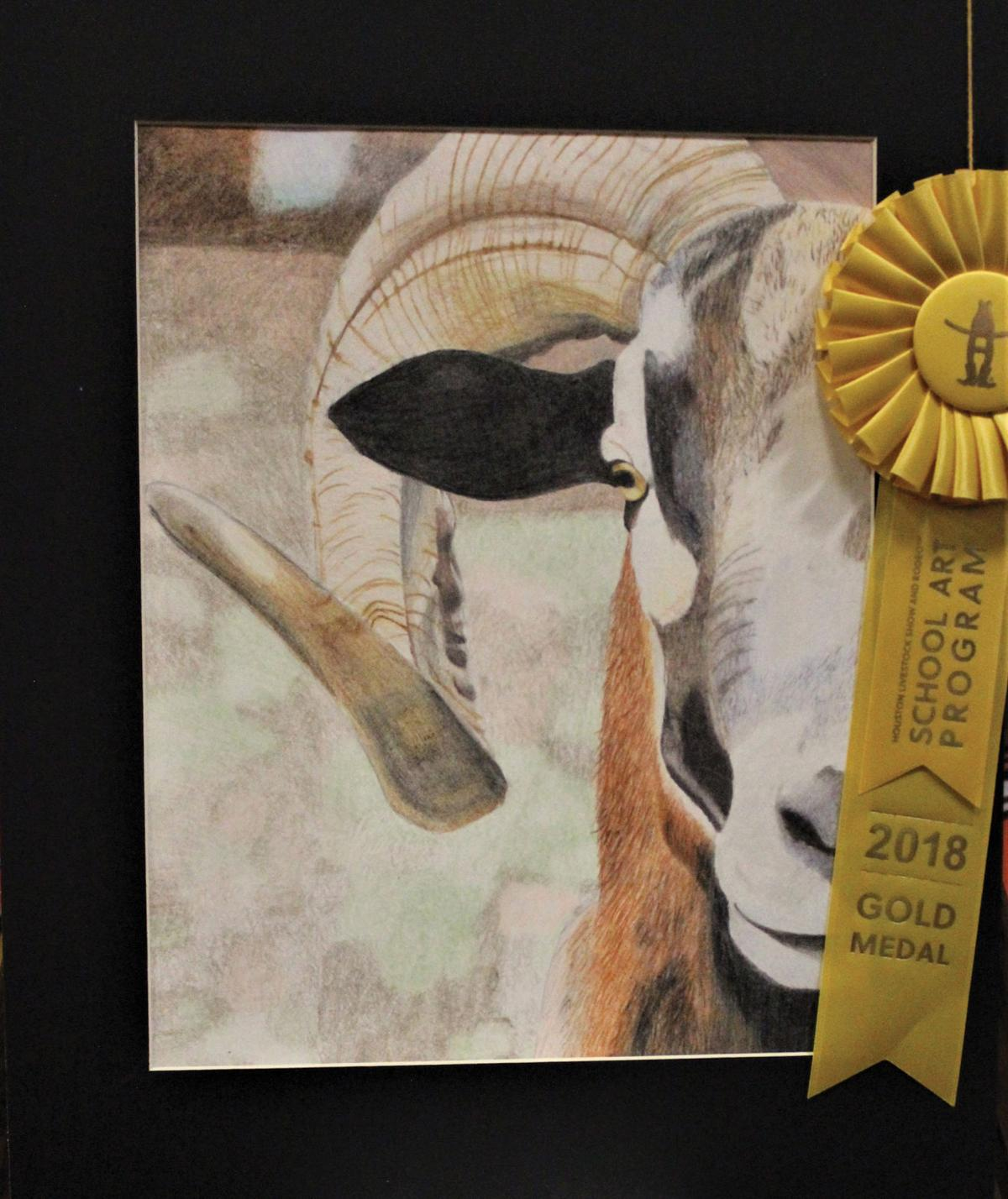 This years Houston Livestock Show and Rodeo School Art