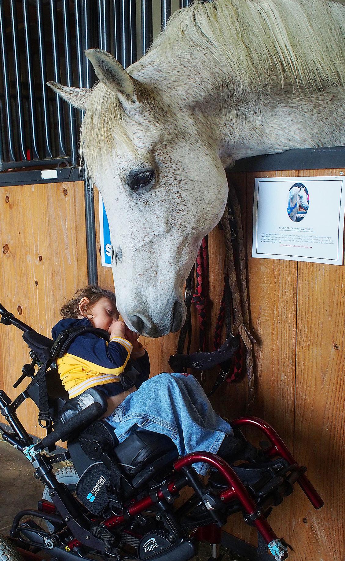 con_Horse_Healing_2_082918