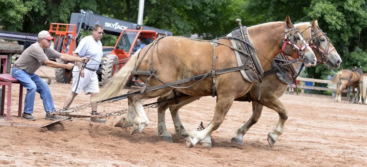 BW Mike Wisniewski Horse Pull 081518 tct