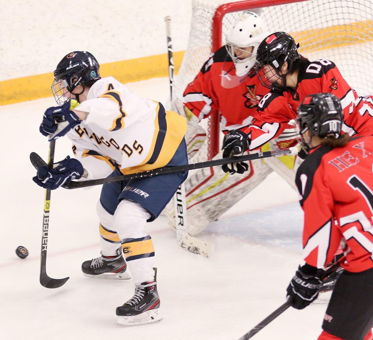 010420_dr_Hockey_2a