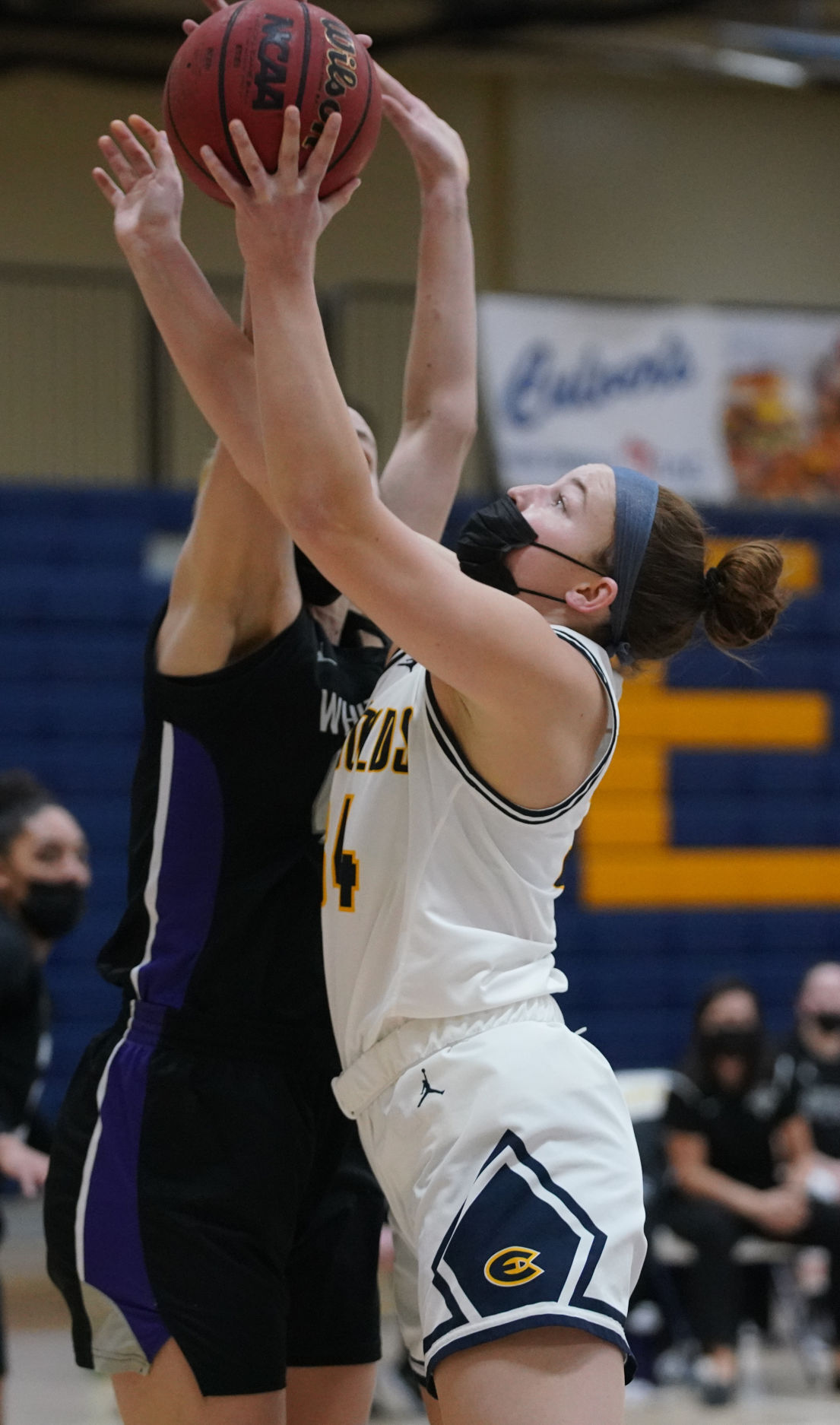 UW-Whitewater at UW-Eau Claire women's basketball