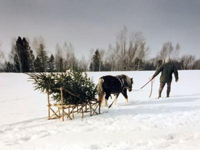 11272019_tct_ChristmasYarn