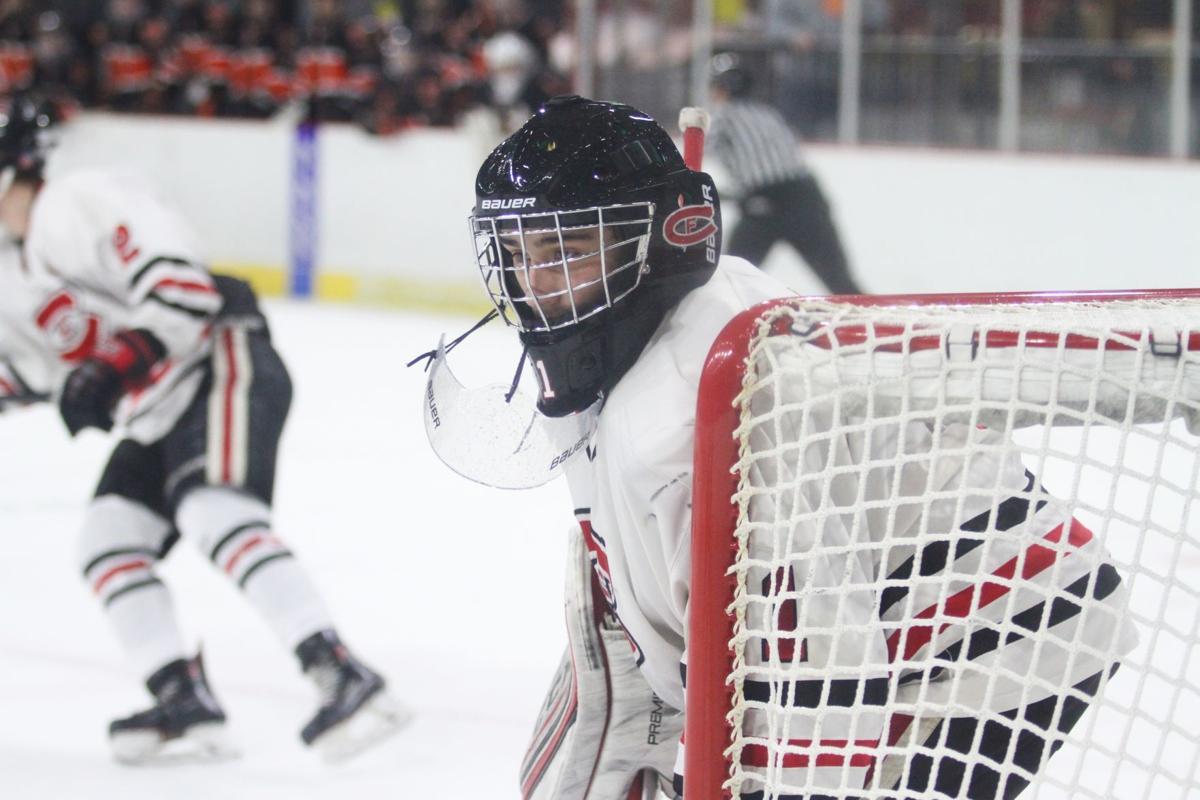 Chippewa Falls state hockey
