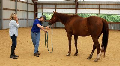 07102019_tct_con_Horsemanship