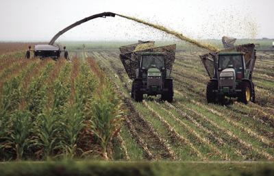 BIZ-FARM-SUSTAINABLE-GET