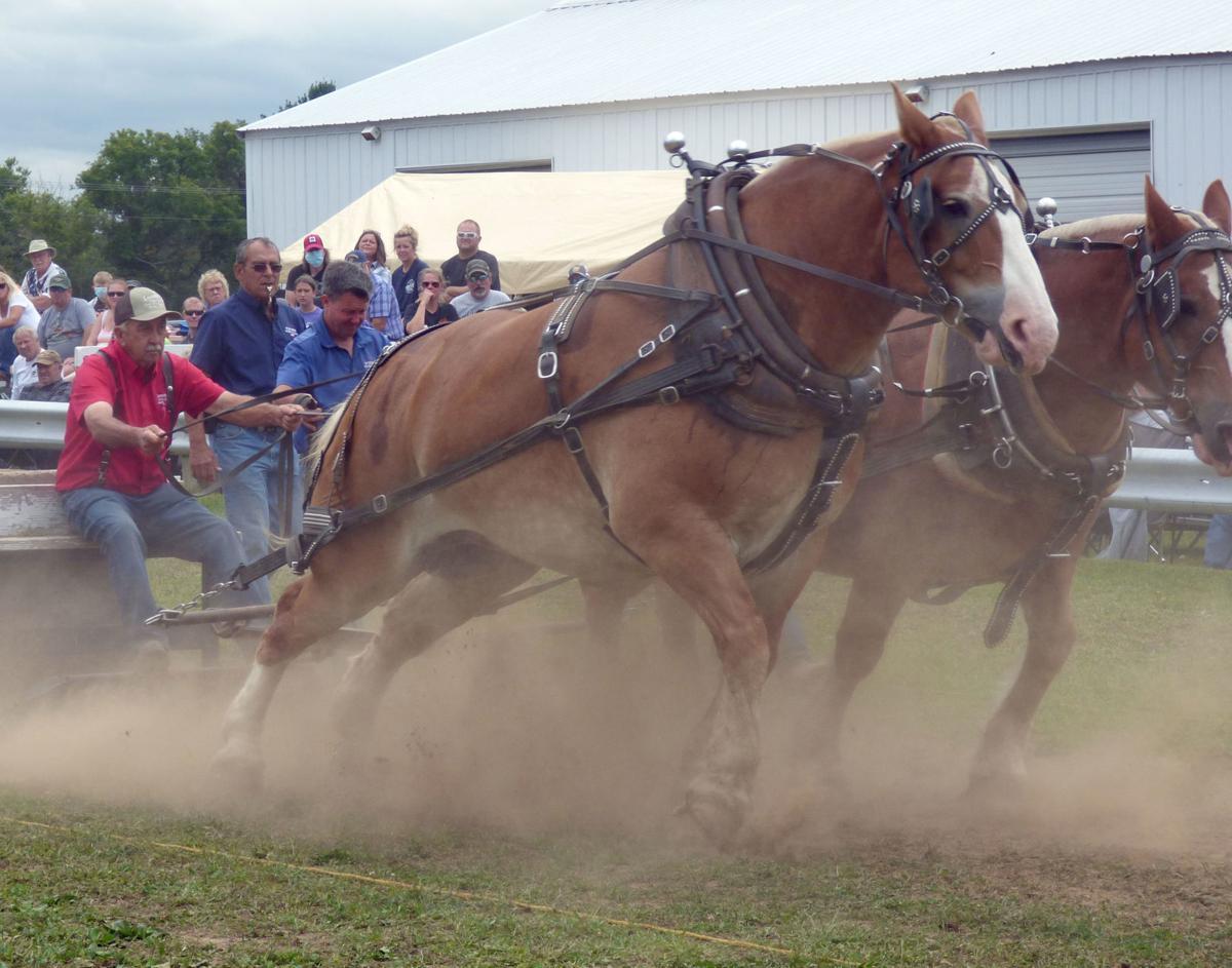 09162020_tct_nj_HorsePull_1