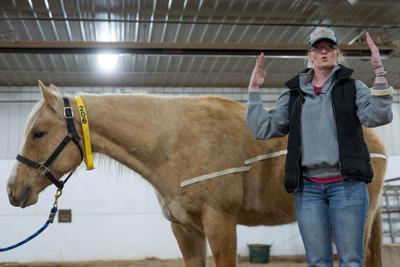 Horse Clinic_04072018_TS_71