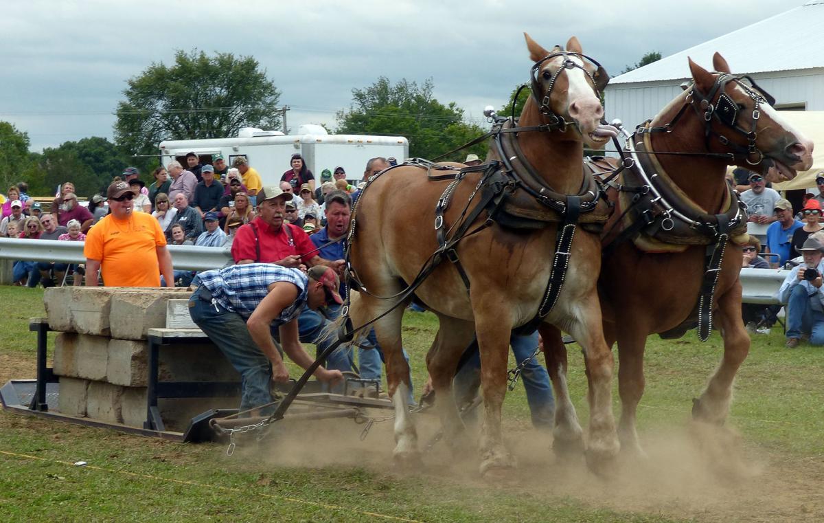 09162020_tct_nj_HorsePull_2