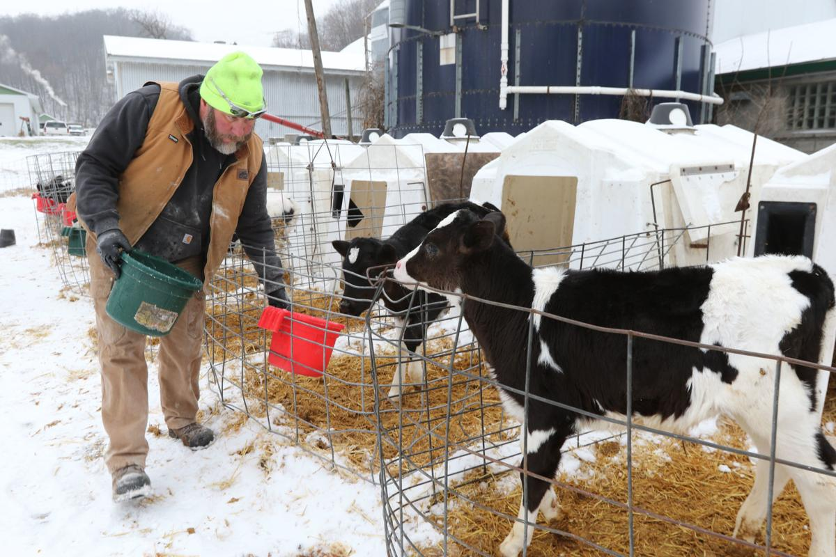 Economic conditions driving farmers to bankruptcy   Farm-news