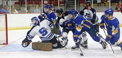 Rice Lake state hockey