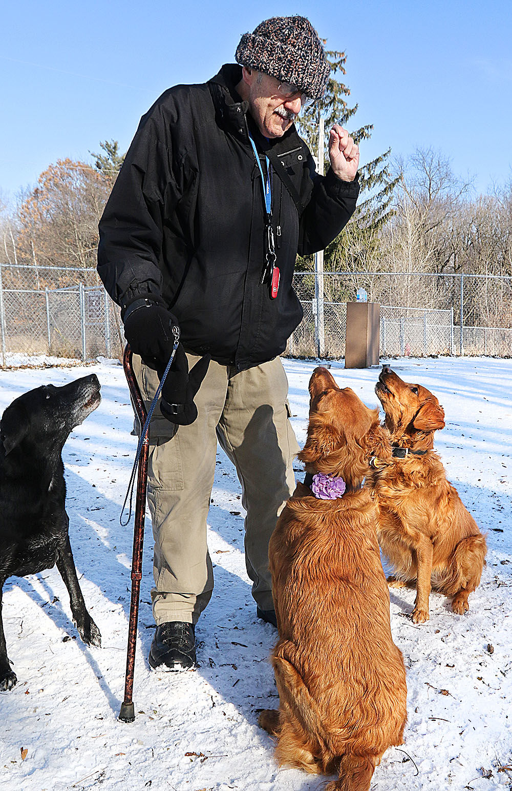 Eau Claire eyeing plan for 2nd dog park | Front Page