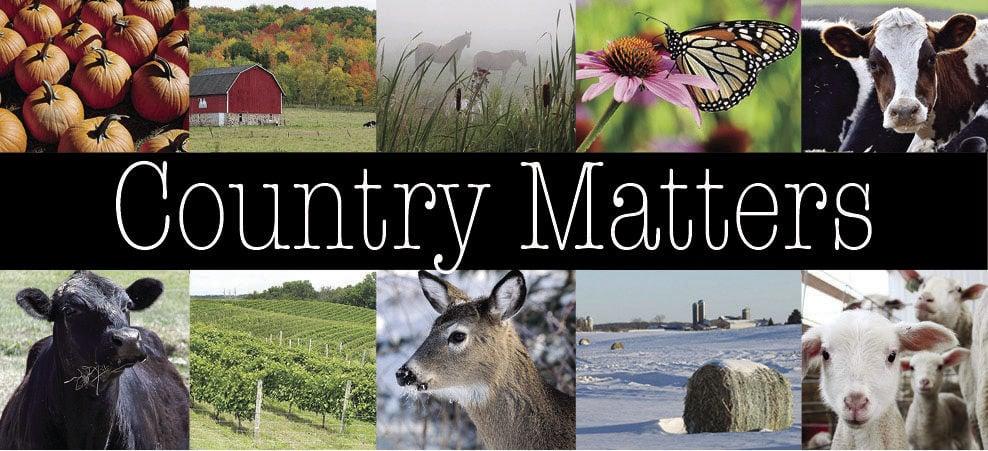 Country Matters  2-column logo