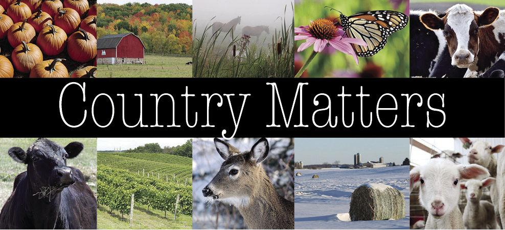 CountryMatters_1.jpg