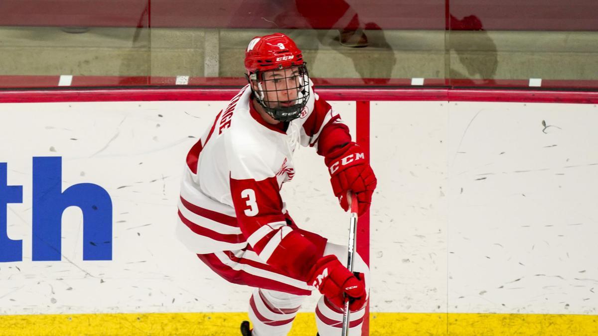 Arizona St Wisconsin Hockey