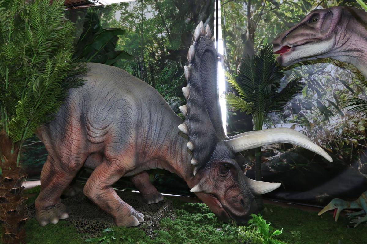 dr_Jurassic_9_082616-16