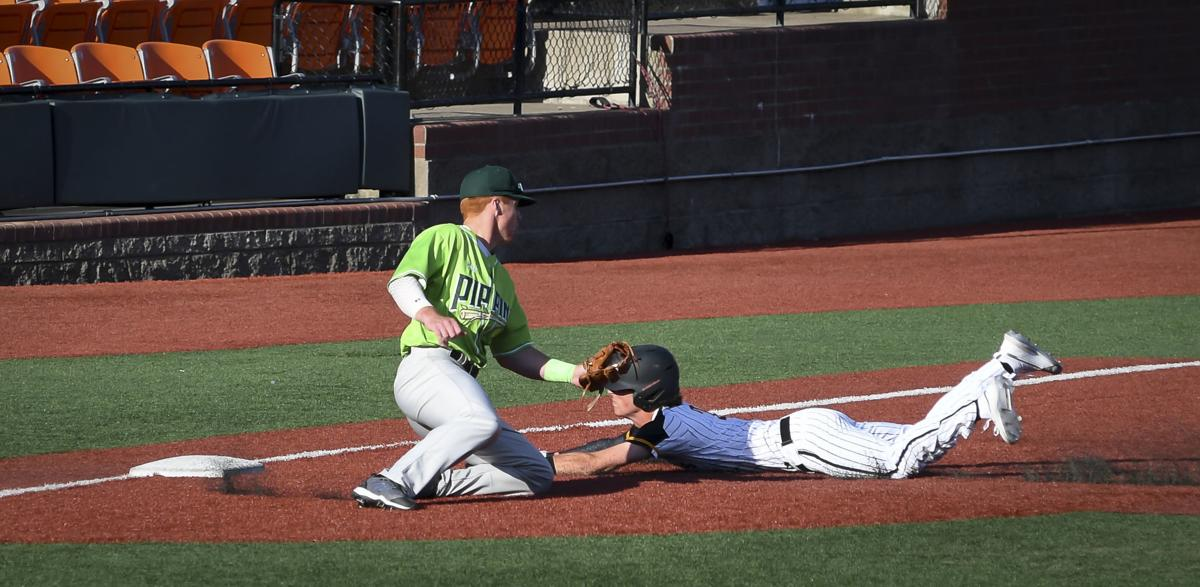 Gallery: Knights vs Pippins 02