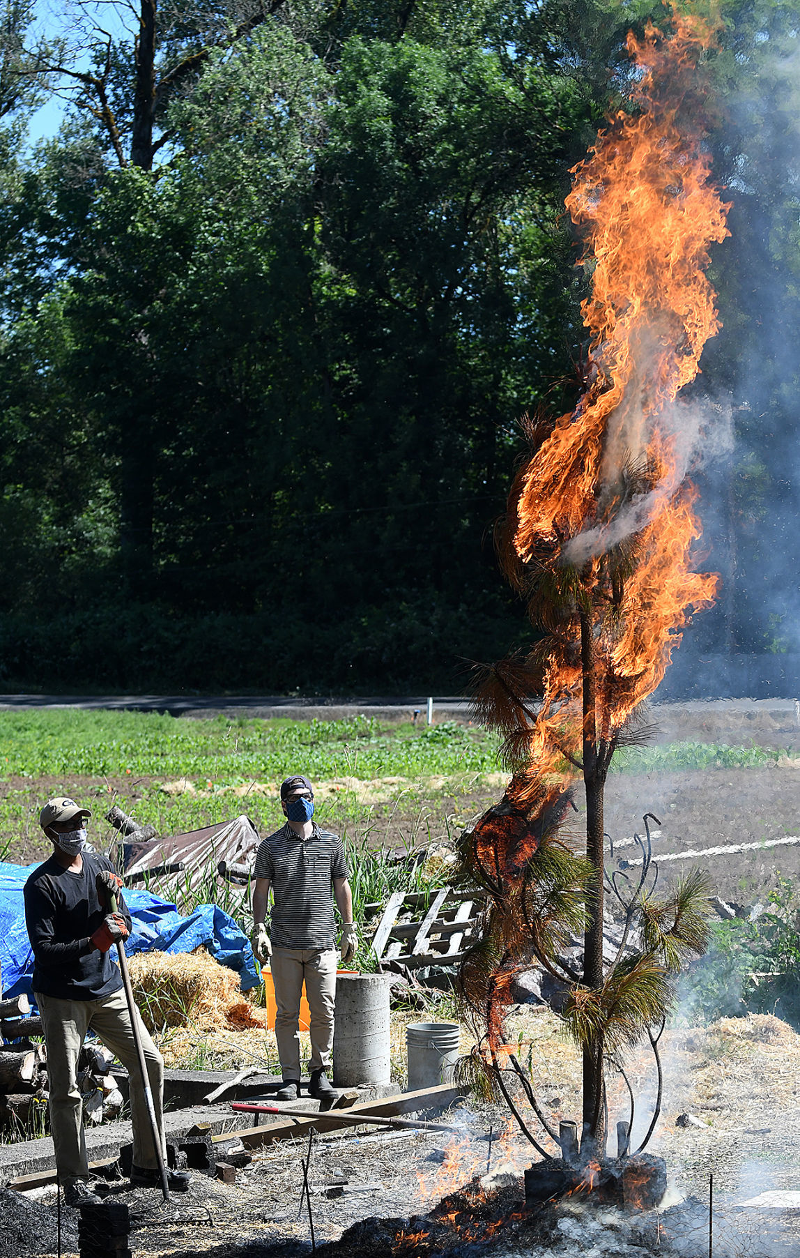 062120-adh-nws-Torching Trees1-my