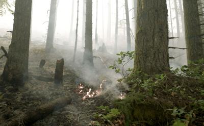 091620-adh-nws-Fire in Santiam State Forest-my
