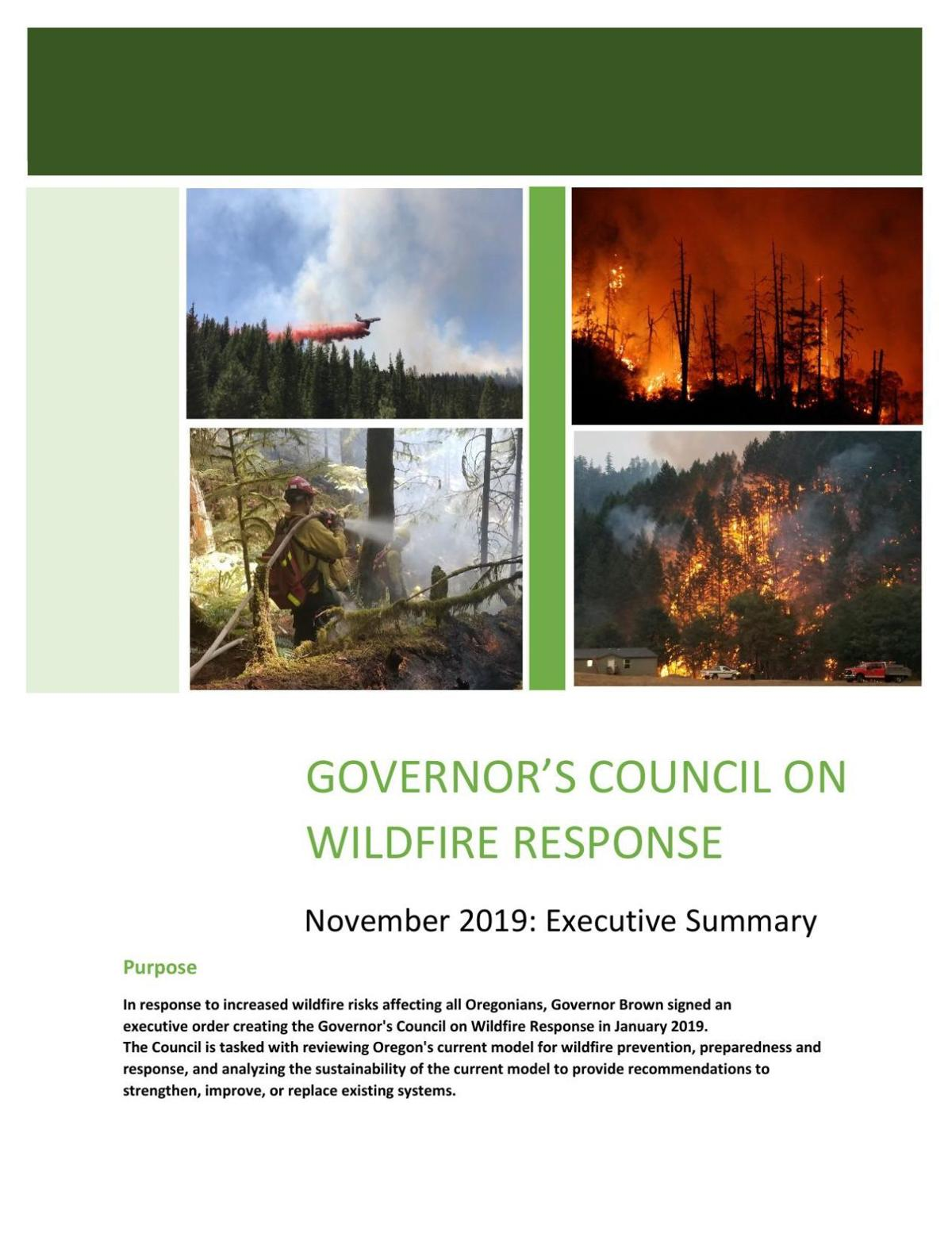 Council on Wildfire Response Executive Summary