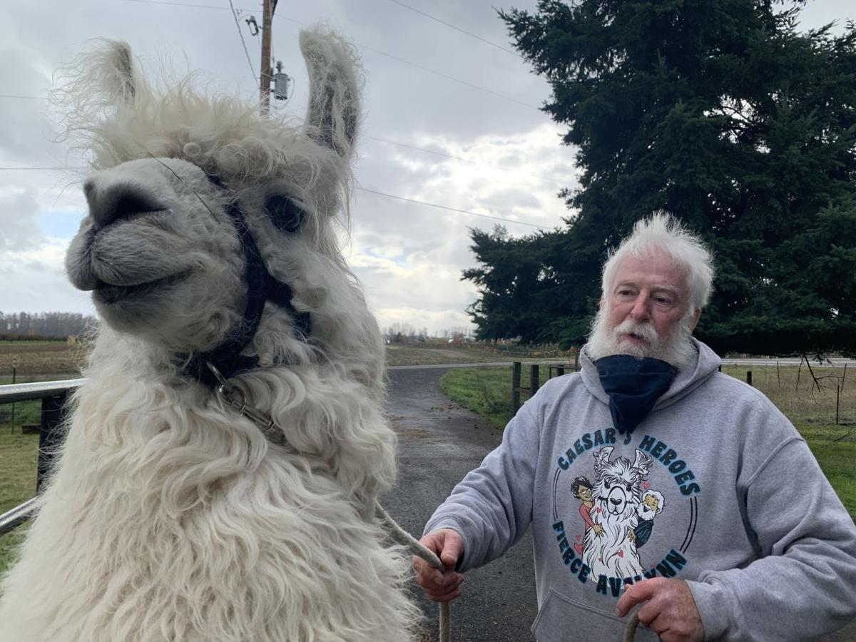 Larry McCool and Caesar the No Drama Llama