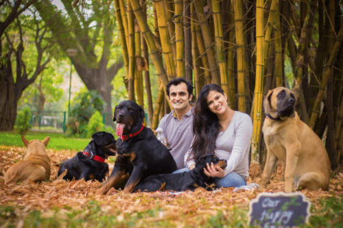 Advice To Abandon Her Dogs Inspires New Mom To Include Them In Her Maternity Photo Shoot