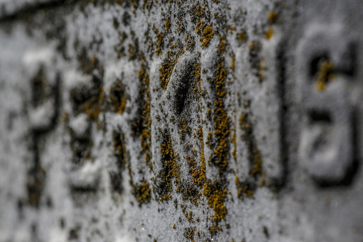 """Moss grows on the Perkins family headstone, where James """"Soup"""" Perkins is buried along with dozens of African American jockeys, groomsmen and farriers from the turn of the 20th century at African Cemetery No. 2."""