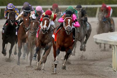 COVID-19 not stopping horse racing
