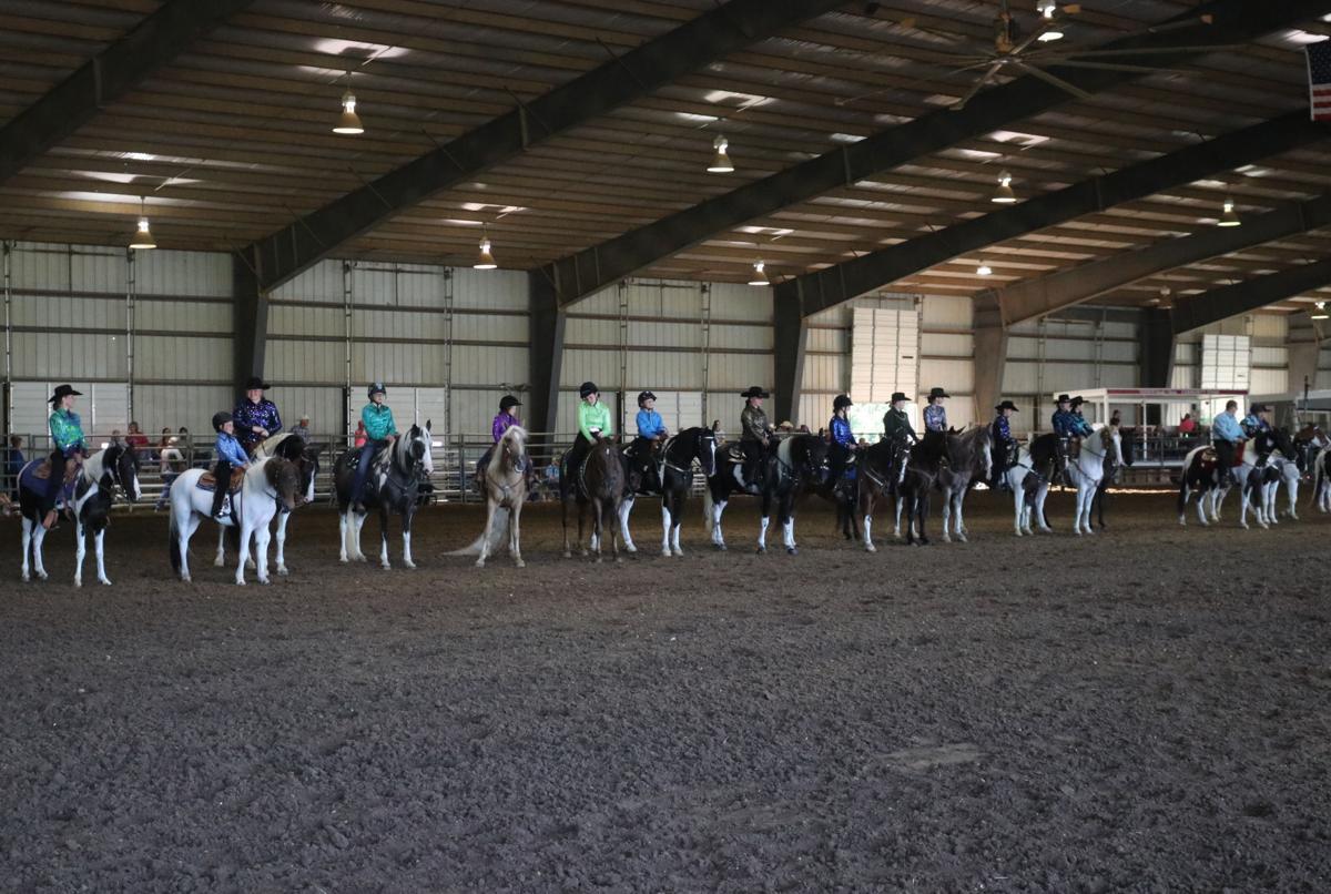 Saddle photo 2