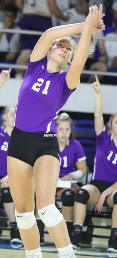 Lady Purple Tiger trio named volleyball all-state