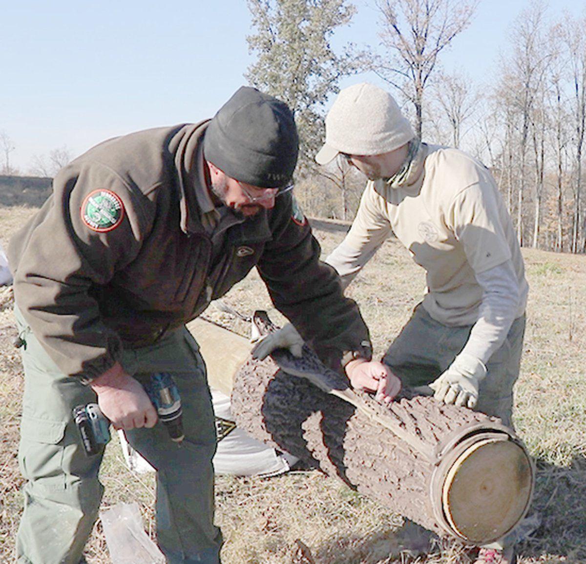 Wildlife managers creating bat habitats in Wilson County