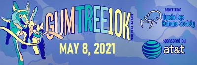 Gum Tree 10K and 2K returns after COVID 19 hiatus
