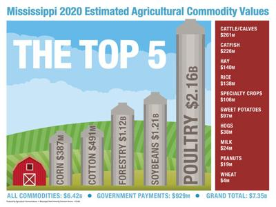 Despite challenges, 2020 ag  increased in value in state