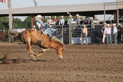 16th Annual Plum Creek Rodeo Results