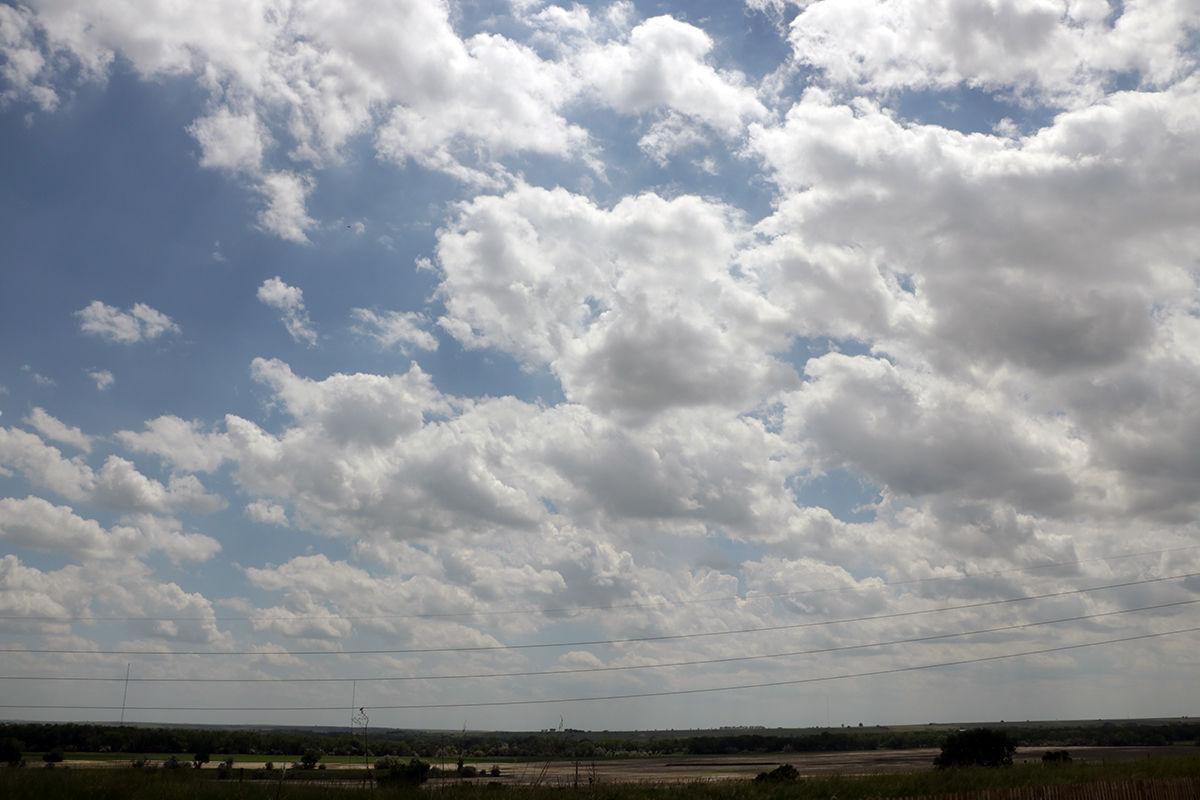 Cumulus field
