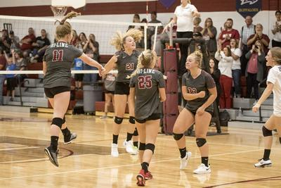 Volleyball: Bulls fall to Bertrand