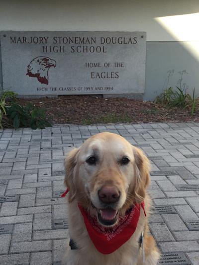Nebraska comfort dog will be there when students return to Florida school struck by mass shooting