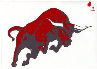 Hi-Line Bulls