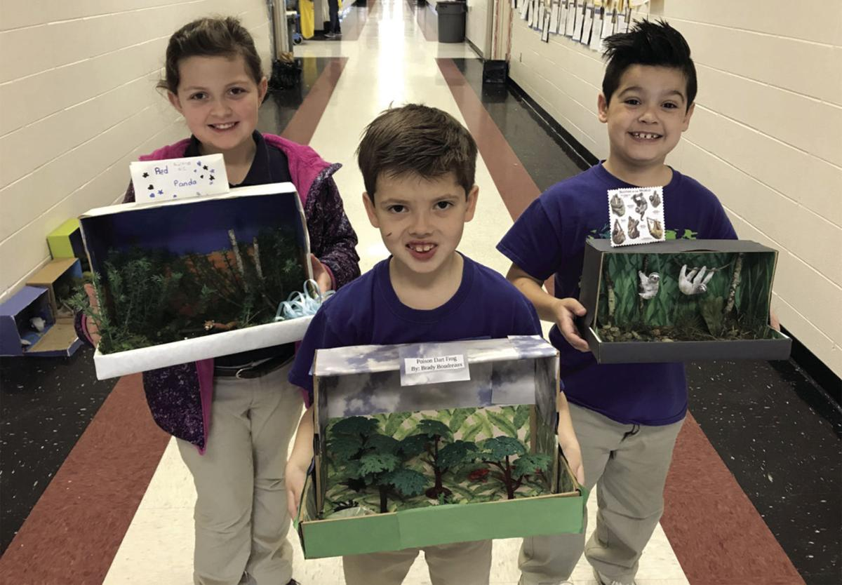 North Live Oak Elementary animal project