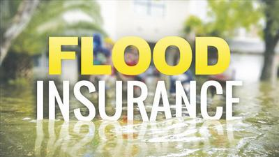 flood insure
