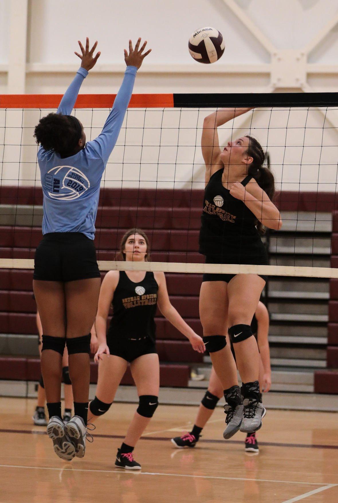 Summer Volleyball Amelia Van Oss